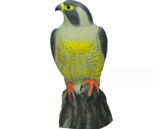 Jaki odstraszacz ptaków wybrać?